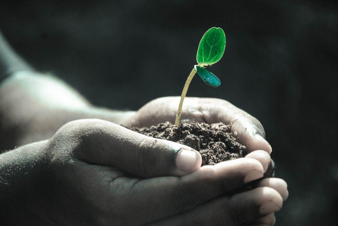 Voor jezelf kiezen is goed voor persoonlijke groei